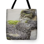 As You Leave Tote Bag