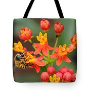 Asclepias Curassavica And Bee Tote Bag