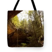 Ash Cave 2 Tote Bag