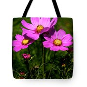 Asheville Wildflowers Tote Bag