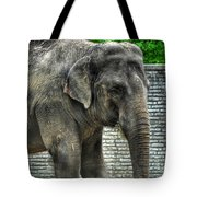 Asian Elephant  0a Tote Bag