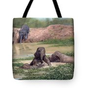 Asian Elephants - In Support Of Boon Lott's Elephant Sanctuary Tote Bag