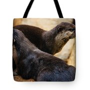 Asian Otters Tote Bag