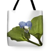 Asiatic Day Flower Tote Bag