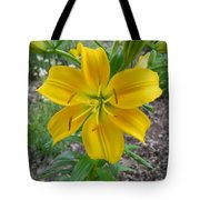 Asiatic Lily 2 Tote Bag