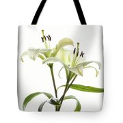 Asiatic Lily Flowers Against White Tote Bag