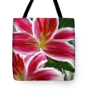 Asiatic Lily- Asiatic Lily Paintings- Pink Paintings Tote Bag