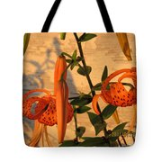 Asiatic Tiger Lily Tote Bag