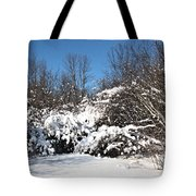 Asleep Under The Snow Tote Bag