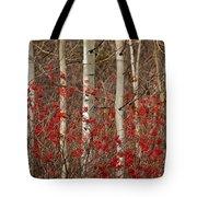 Aspen And Berries Tote Bag