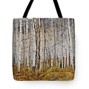 Aspen And Ferns Tote Bag