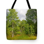Aspen And Others Tote Bag