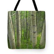 Aspen Forest In Spring Tote Bag