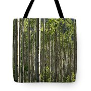 Aspen Grove Along Independence Pass II 2009 Tote Bag
