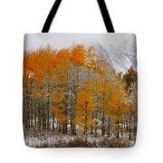 Aspen Grove Along The Snake River Grand Teton National Park Tote Bag