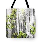 Aspen Grove Tote Bag by Elena Elisseeva