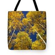 Aspen Grove In Fall Tote Bag