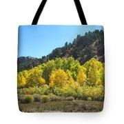 Aspen Grove In The Fall Tote Bag