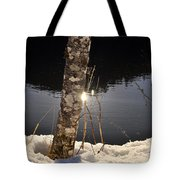 Alder In Winter Tote Bag