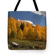 Aspen On The Road To Telluride Dsc07397 Tote Bag