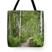 Aspen Path Tote Bag