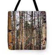 Aspen Patterns 14438 Tote Bag