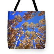 Aspen Tree Tops Tote Bag