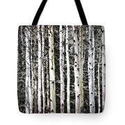 Aspen Tree Trunks Tote Bag