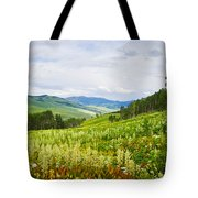 Aspen Trees And Wildflowers Tote Bag