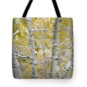 Aspen Trees Covered With Snow Tote Bag