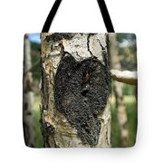 Aspen Trees Dying In Colorado Tote Bag