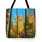 Aspen Trees In Fall Tote Bag