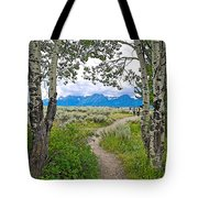 Aspen Trees On Trail To Jackson Lake At Willow Flats Overlook In Grand Teton National Park-wyoming  Tote Bag
