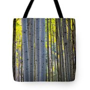 Aspen Trunks Tote Bag by Inge Johnsson