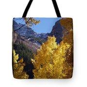 Aspen Viewing Tote Bag