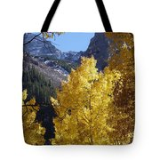 Aspen Window Tote Bag