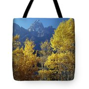 1m9356-v-aspens And The Grand Teton Tote Bag