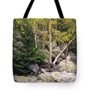 Aspens From Rocks Tote Bag