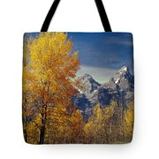 1m9353-aspens In Autumn And The Teton Range - V Tote Bag