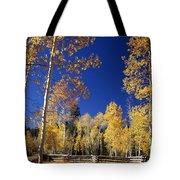 Aspens In Fall - V Tote Bag