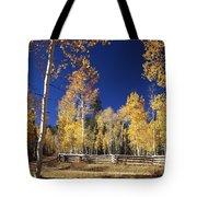Aspens In Fall Tote Bag