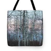 Aspens In Twilight Tote Bag