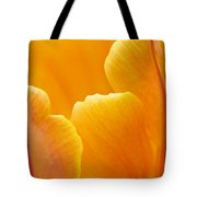 Aspiration Tote Bag