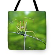 Assassin Bug Nymph - Reduviidae Tote Bag