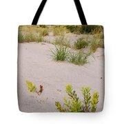 Assateague Dunes 2 Tote Bag