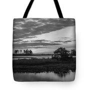 Assateague Salt Marsh Bw Tote Bag