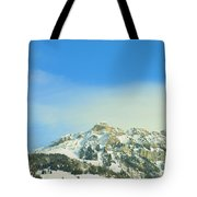 Assertive Outlook Tote Bag