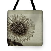 Aster With Textures Tote Bag by John Edwards