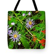 Asters And Scarlet Paintbrush On Swan Lake Trail In Grand Teton National Park-wyoming  Tote Bag