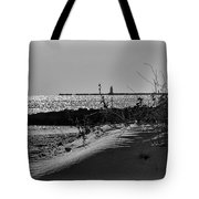 At Black Point Tote Bag
